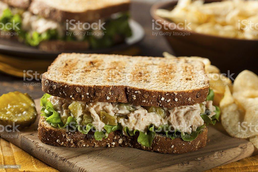 Healthy Tuna Sandwich with Lettuce stock photo
