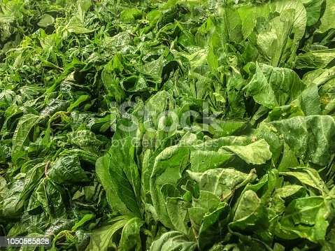 istock Healthy Vegetables 1050585828