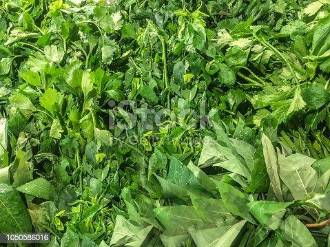 istock Healthy Vegetables 1050586016