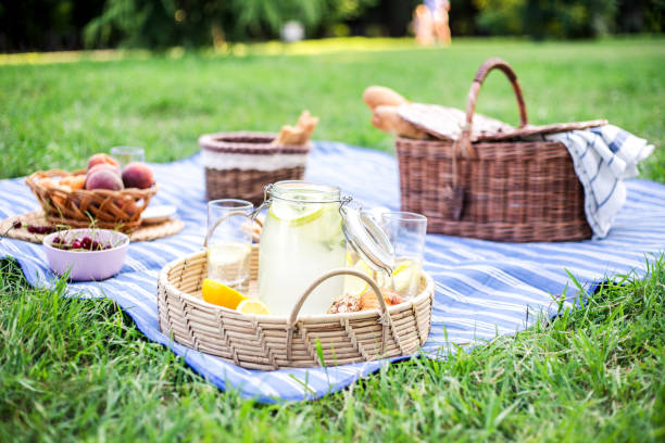 Healthy vegetarian picnic with a fresh fruits and bakery products. Healthy vegetarian picnic with a delicious spread of fresh fruit and bakery products on green grass. picnic stock pictures, royalty-free photos & images