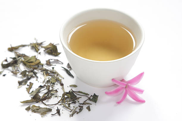 Healthy white tea stock photo
