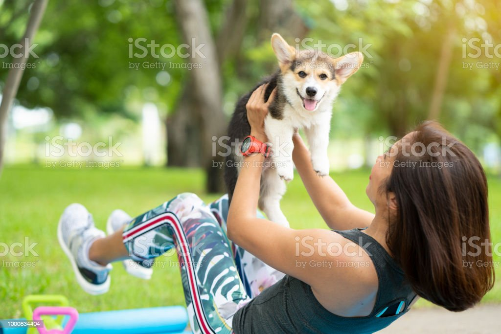 A healthy woman playing with a corgi puppy while excersing on yoga mat surrounding with gym tools such as kettlebell and dumbbell, outdoor training with dog stock photo