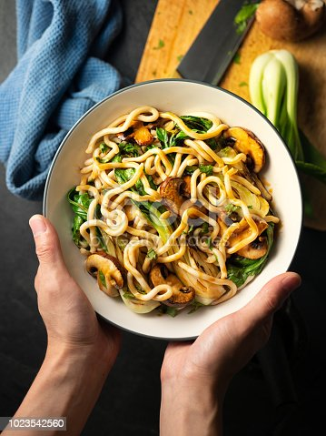 Home made freshness undon noodles with grilled  bok choy ,chestnut mushroom and teriyaki sauce