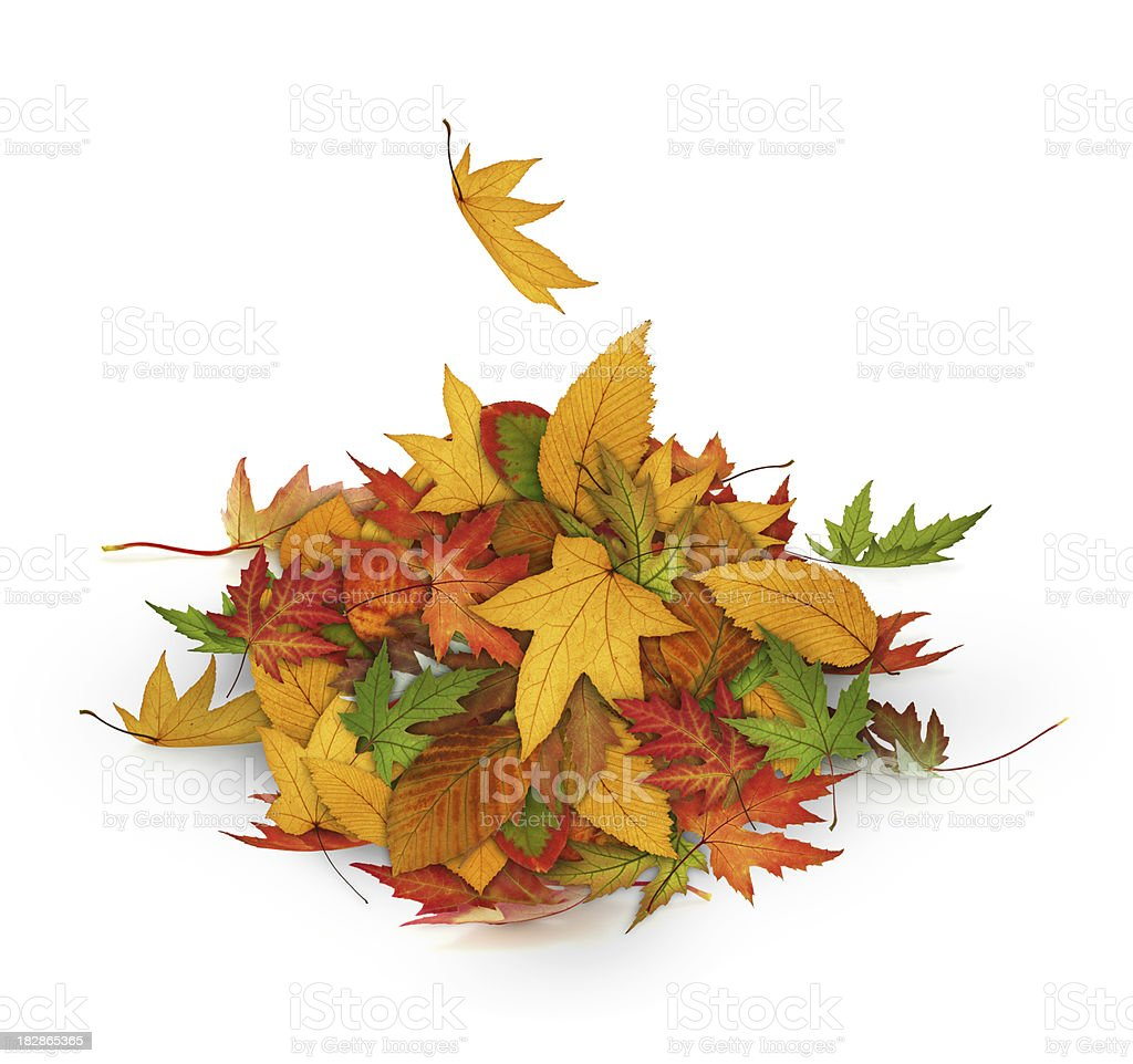 Heap Of Autumn Leaves royalty-free stock photo