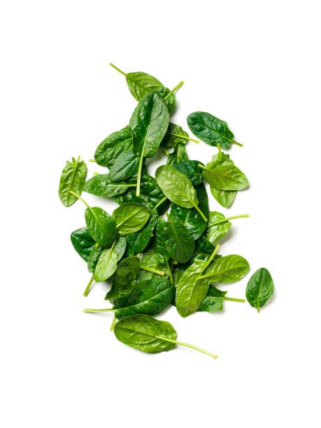 heap of baby spinach isolated - szpinak zdjęcia i obrazy z banku zdjęć