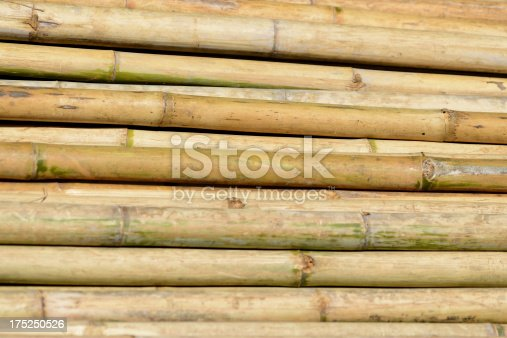Heap of bamboo