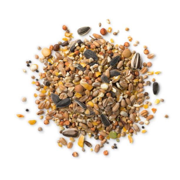 Heap of bird food mixture stock photo