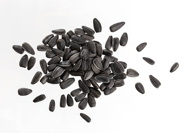 Heap of black sunflower seeds isolated on white background. stock photo