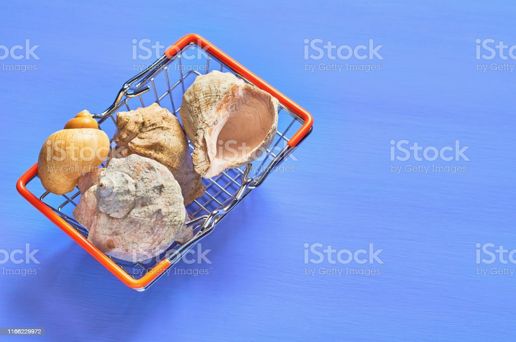 Heap of different beautiful empty seashells in metal market basket on...