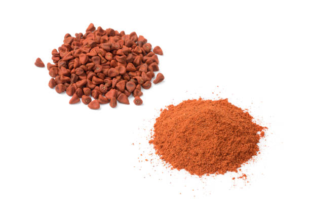 Heap of dried Annatto seeds and a heap of ground Annatto  powder stock photo