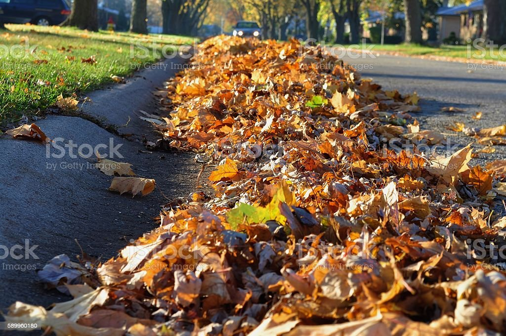 Heap of leaves along the street curb. stock photo