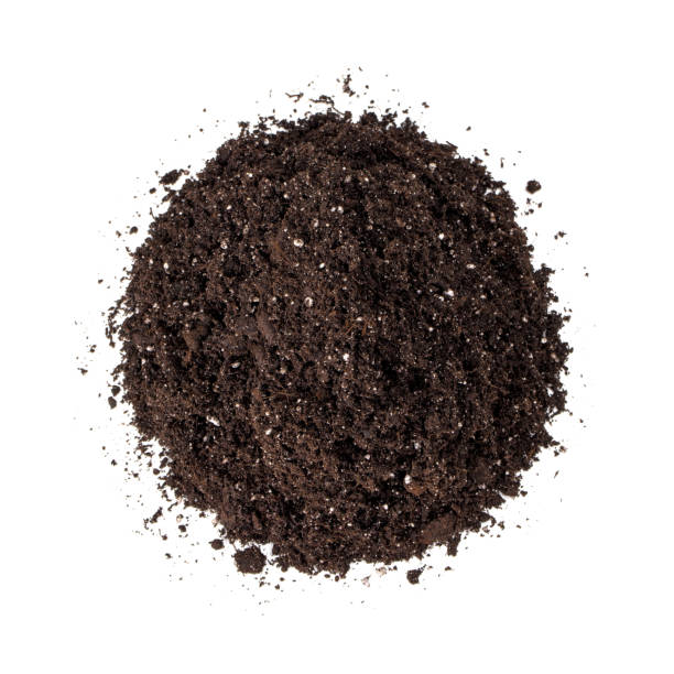 heap of potting soil (dirt) isolated on white - dirt stock photos and pictures