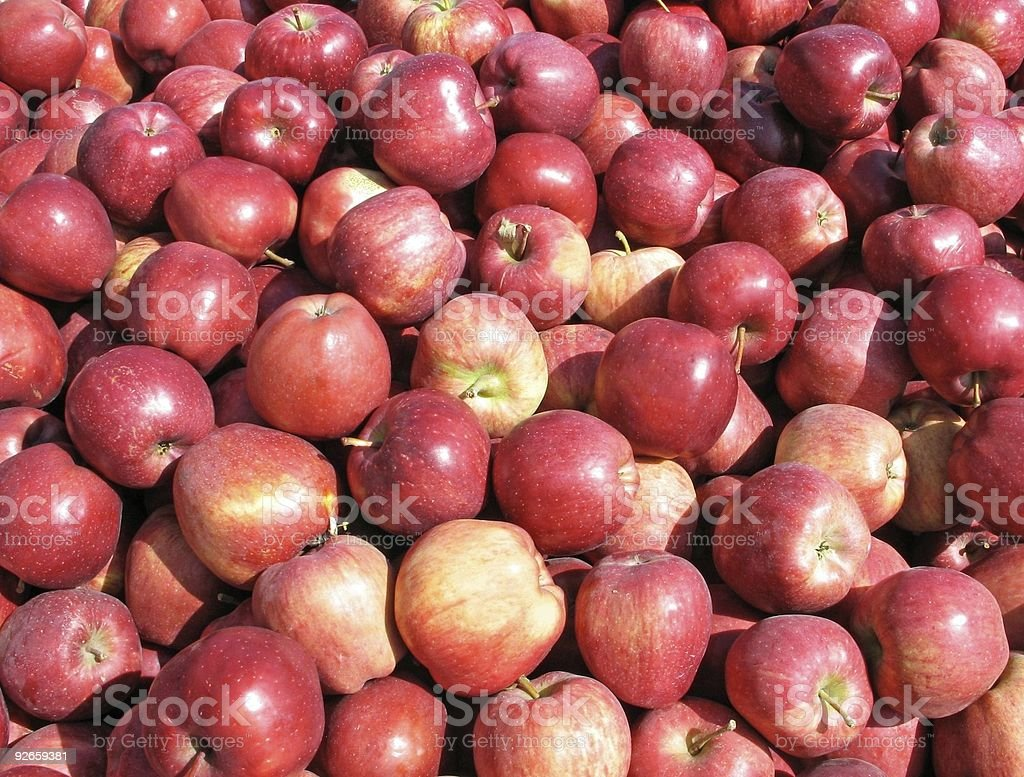 Heap of red delicious apples royalty-free stock photo