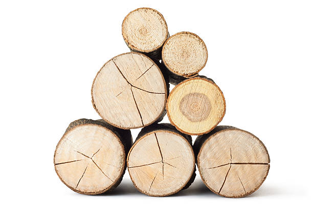 Heap of several logs. View at saw cut. Heap of several logs. View at saw cut. Isolated on a white. log stock pictures, royalty-free photos & images