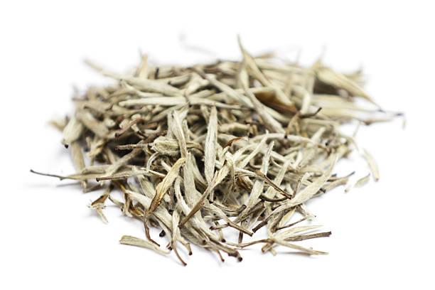 white tee blätter - grüner tee koffein stock-fotos und bilder