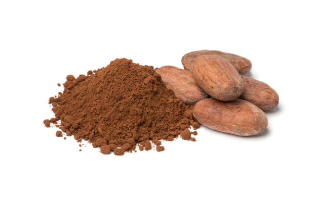 Heap of whole cocoa beans and cocoa powder stock photo