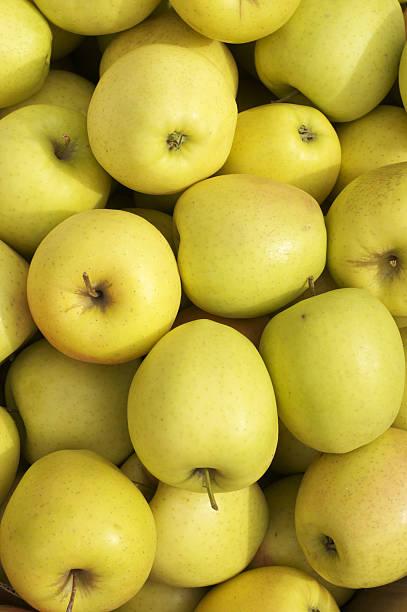 tonnes de pommes - golden photos et images de collection