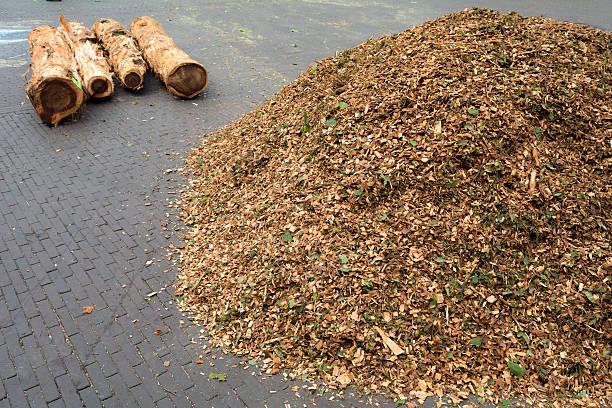 heaps of shredded wood  branches on city pavement - häcksler stock-fotos und bilder