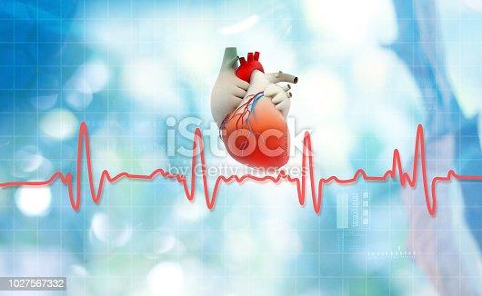 istock Heart anatomy with normal heartbeat rhythm 1027567332