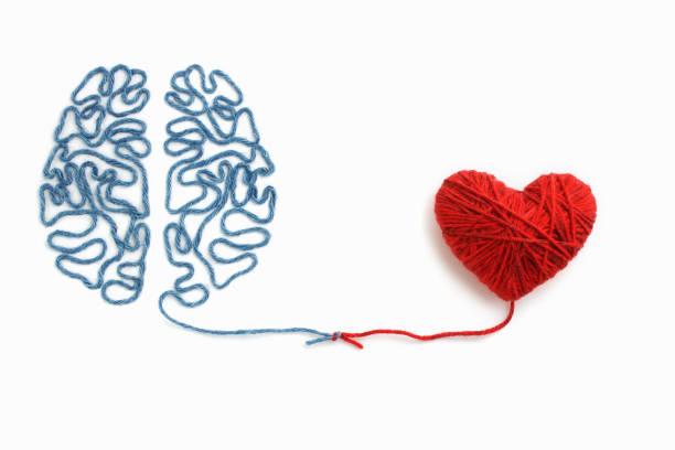 serce i mózg połączone węzłem na białym tle - inteligencja zdjęcia i obrazy z banku zdjęć