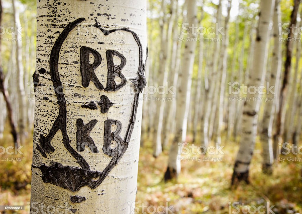Heart And Initials Carved In Tree Stock Photo More Pictures Of