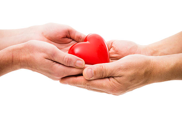 Heart at the human hands stock photo