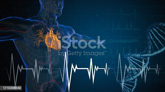 heart attack and heart disease
