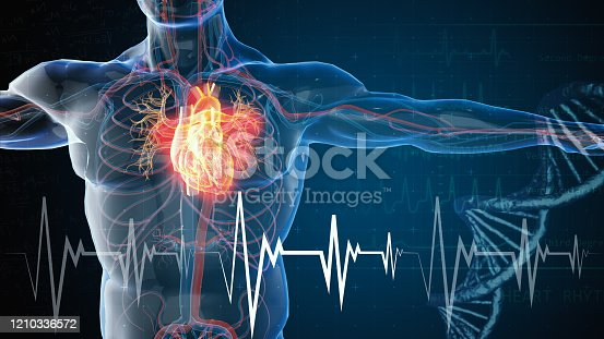 istock heart attack and heart disease 1210336572