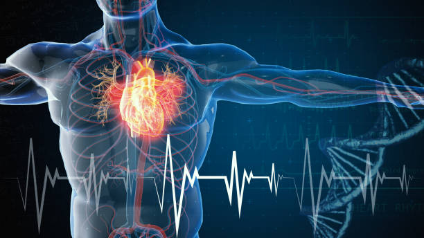 heart attack and heart disease heart attack and heart disease pulse trace stock pictures, royalty-free photos & images