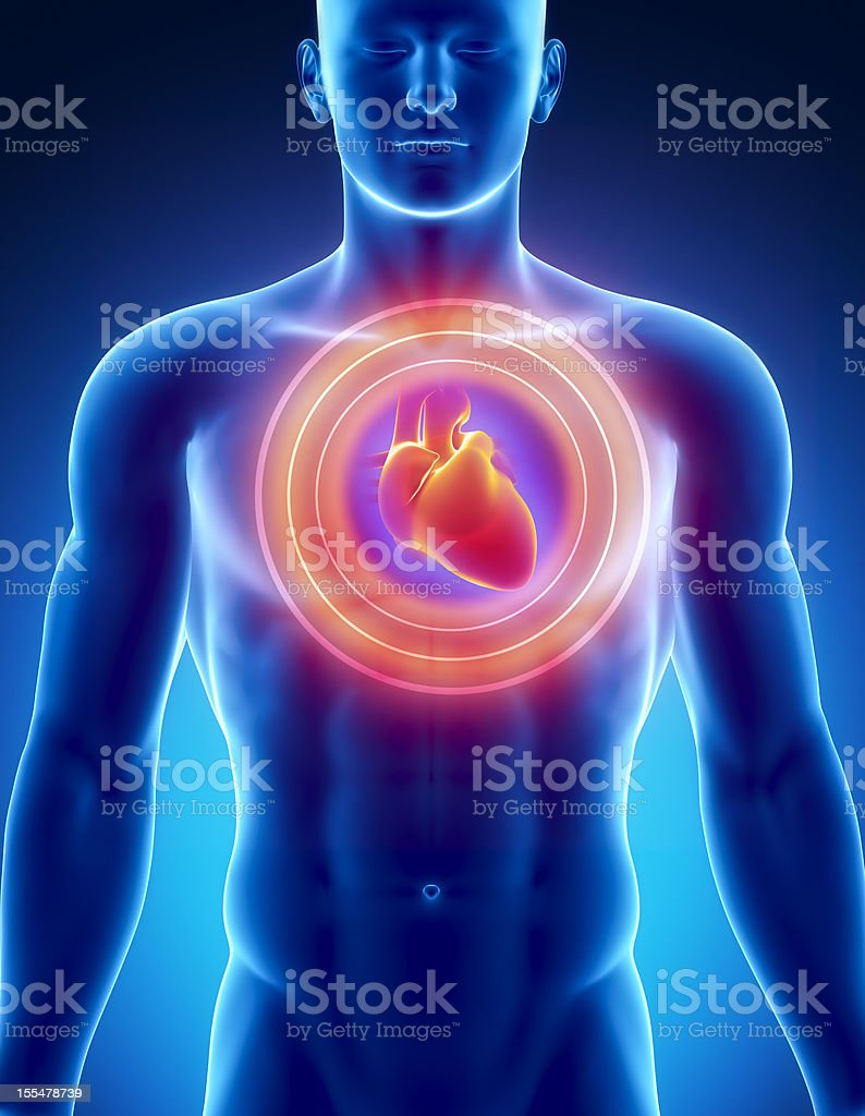 Heart attack concept Male anatomy of human organs in x-ray view Abdomen Stock Photo