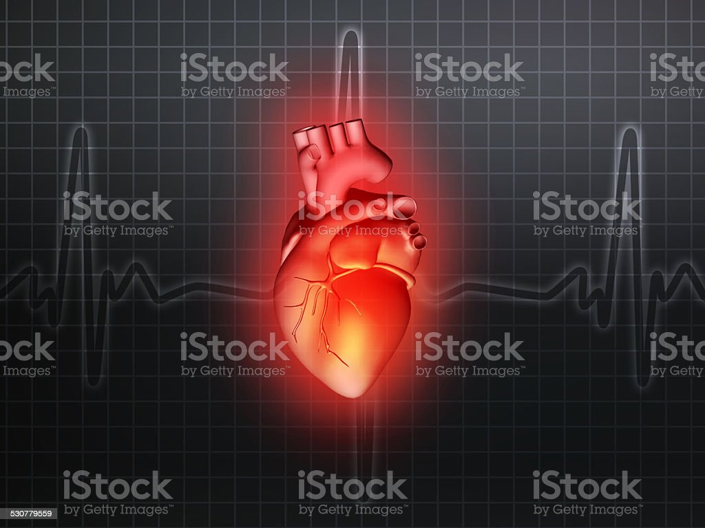 heart disease 3d anatomy illustration gray stock photo
