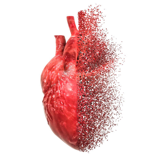 Heart disease concept. 3D rendering isolated on white background stock photo