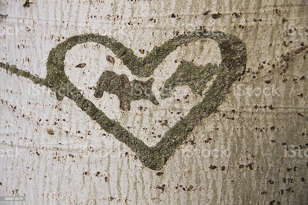 Heart Engraved on a Tree - Corazon Grabado en  Arbol stock photo