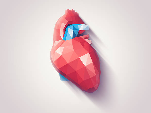 heart faceted - human heart stock photos and pictures