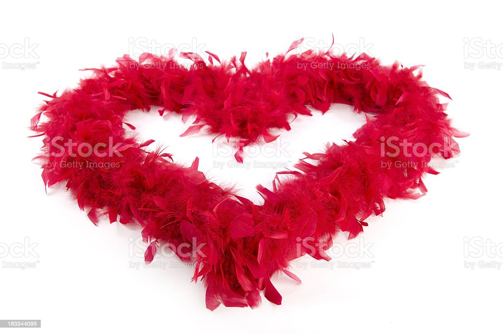 Heart feathers stock photo