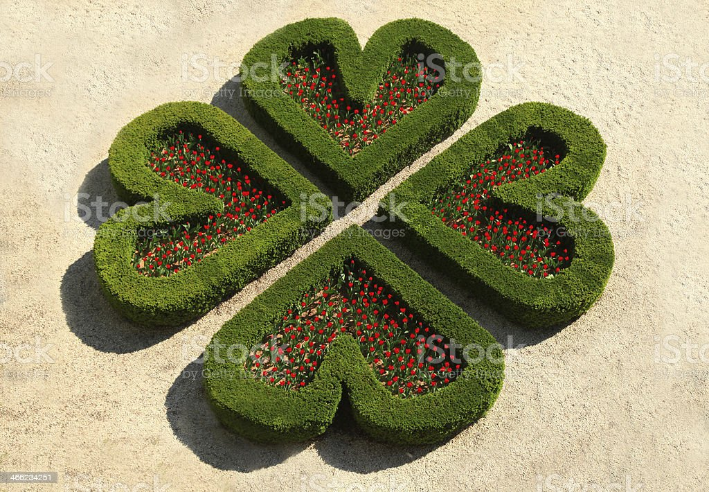 Heart flowerbed stock photo