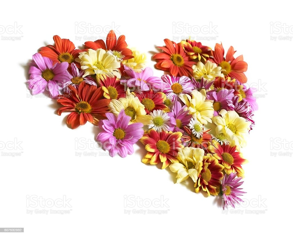 Heart from flowers stock photo