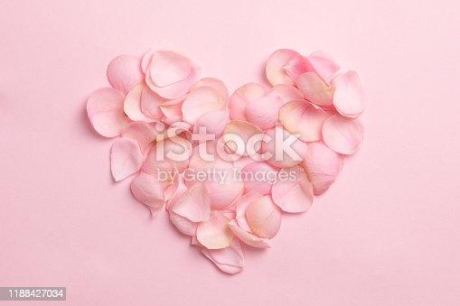 Heart from gentle rose petals on pink background