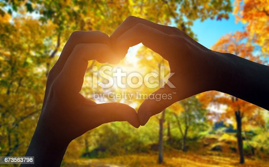 istock Heart hand gesture 673563798