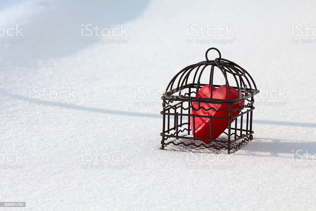 Heart in cage in the snow landscape view stock photo