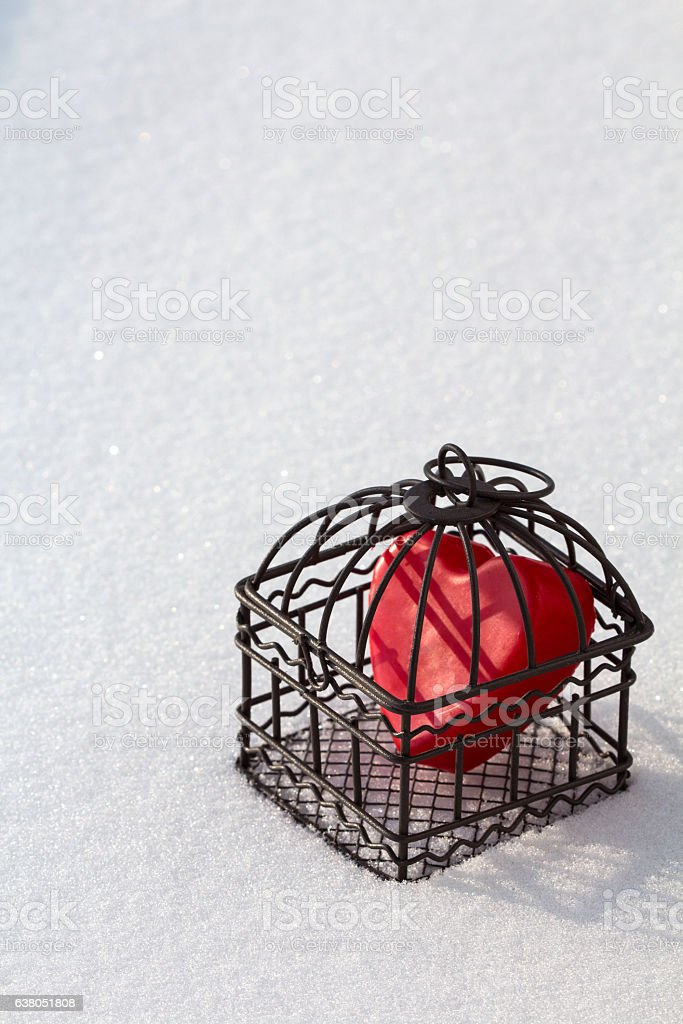 Heart in cage in the snow portrait view stock photo
