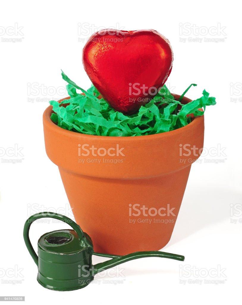 heart in clay pot stock photo