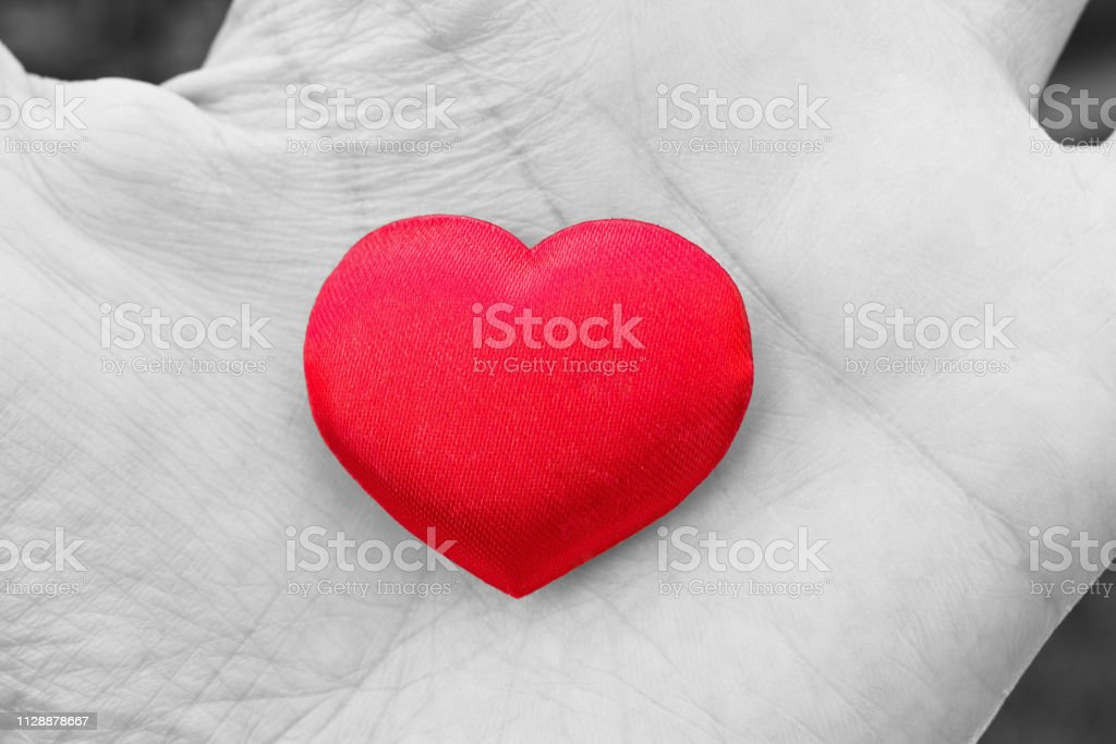Heart in hand. Romantic concept. Big red heart in woman´s open palm....