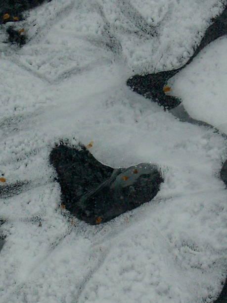 Heart in Ice stock photo