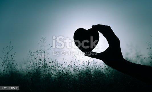 istock Heart in the field 621695532