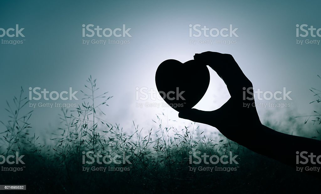 Heart in the field stock photo