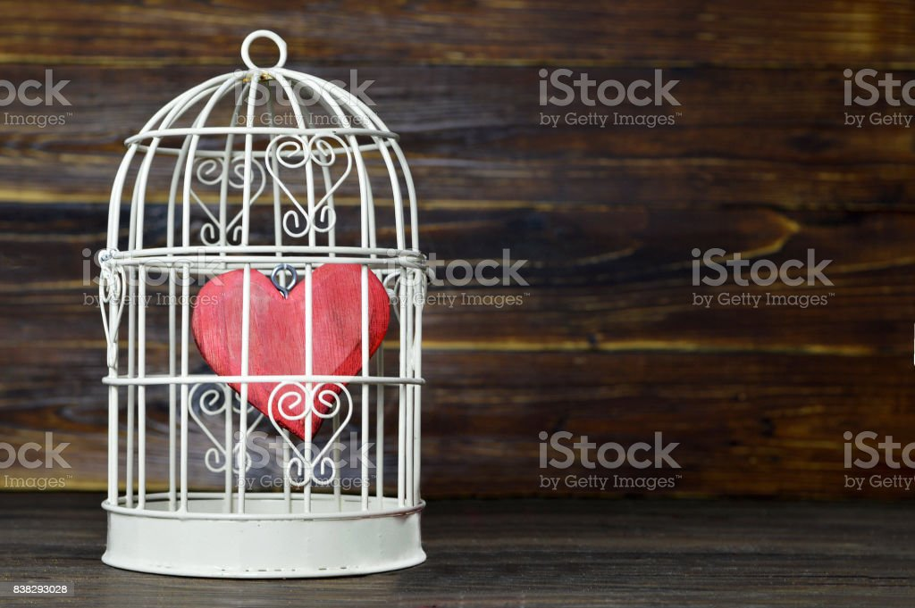 Heart inside the bird cage stock photo
