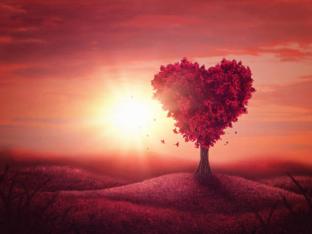 heart love tree - love stock photos and pictures