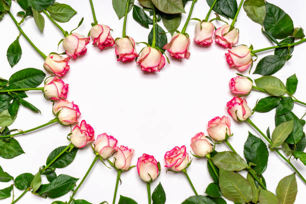 Heart made of beautiful fresh pink roses flowers on white background picture id1294269004?b=1&k=6&m=1294269004&s=612x612&w=0&h=sd5ih zuqj7ncgmj05nnb8s zqifa1191zgehcqhvmk=