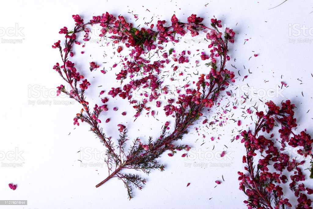 One heart made of colorful branches on white background